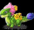 Dragon FLORAISON