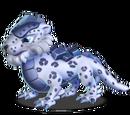 Dragon LEOPARD