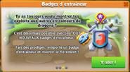 MAJ333 Badges