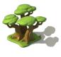 Grand arbre tranquilité1