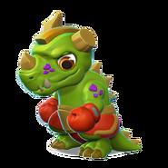 Boxer Dragon