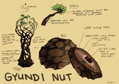 Gyundi Nut Full