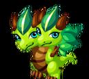 Palm Dragon