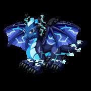 Blue Storm Adult