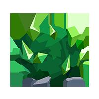 Emerald Bush