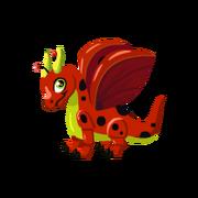 Ladybug Juvenile