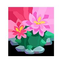 Desert Bloomer