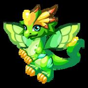 Sky Fairy Juvenile