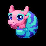 Nautilus Baby
