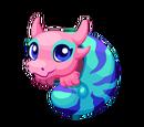 Nautilus Dragon