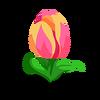 Titanic Tulip