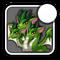 Iconneogreen3