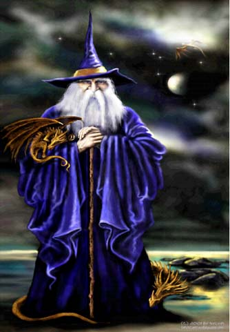 image blue wizard jpg dragon story wiki fandom powered by wikia