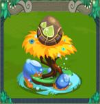 EggDawntree