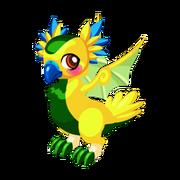 Parakeet Adult