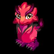 Rex Begonia Baby