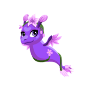 Lavender Juvenile