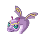 Sugar Plum Dragon