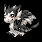 Snowhound Baby