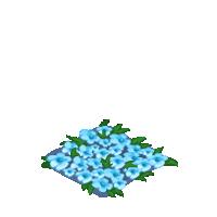Blue Flower Bed