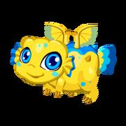 Puffer Juvenile