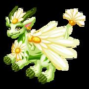 Bright Daisy Epic