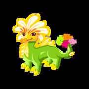Daisy Adult