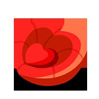 Cardiocushion