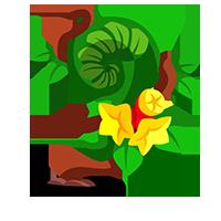 Megaflora