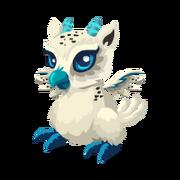 Snow Owl Juvenile