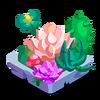 Succulent Garden Building