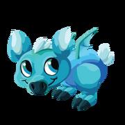 Turquoise Baby