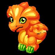 Marigold Juvenile