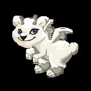 Polar Juvenile