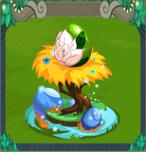 EggWhiteRose