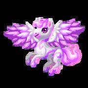 Pegasus 2nd Juvenile