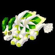 White Lotus Adult