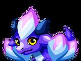 Crocus Dragon