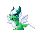 Frosted Pine Dragon