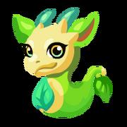 Lemongrass Baby
