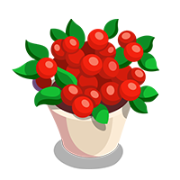 Lingonbush