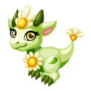 Bright Daisy Baby