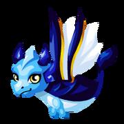 Aquarknight Baby