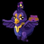 Peacock Juvenile