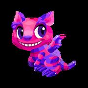 Cheshire Baby