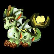 Swamp Juvenile