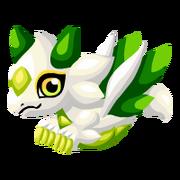 White Lotus Baby