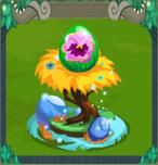 EggPansy