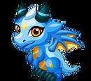 Argentinian Dragon
