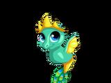 Hera Dragon